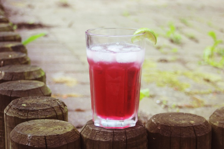 cosmopolitan, cranberry juice, vodka, cocktail, exterior, garden, glass, shot